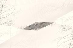 DSC_6220 (dustinmoore) Tags: blackandwhite bw abstract art architecture blackwhite nikon artistic alt doubleexposure creative multipleexposure futurism multiple bauhaus alternative abstractarchitecture whiteblack alternativephotography artphotography whitebw newvision abstractphoto multiexpose abstractblackwhite exposureabstractblack