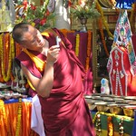 "Monk Photographer at Mahabodhi Temple <a style=""margin-left:10px; font-size:0.8em;"" href=""http://www.flickr.com/photos/14315427@N00/6874910765/"" target=""_blank"">@flickr</a>"
