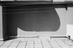 m10 (yannmerlin) Tags: portraits photographie paysages leicam7 photographienoiretblanc photographieargentique photographieartistique photographiedart chambre4x5 photographeparis yannmerlinphotographe photographeportraits elmar28de50 portraitmathieukassovitz portraitbarbetshroeder photographiedauteur yannmerlin