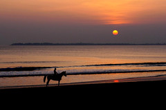 Coucher de soleil (rogermarcel) Tags: ocean sunset horse seascape colors cheval lights bretagne mygearandme
