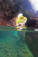 hidden places (bluewavechris) Tags: ocean sea water coral hawaii lava marine underwater scenic maui explore hidden wailea