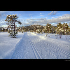 Perfect conditions for cross-country skiing (vegarste) Tags: trees sky snow norway clouds forest landscape norge nikon europe skies tracks norwegen skog trondheim spor hdr crosscountryskiing snø bymarka landskap trær trøndelag d90 3xp photomatix 3exp