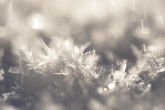 Snow crystal (masato_55) Tags: snow macro ice japan nikon   d700