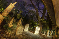 Magic Kingdom: The Haunted Mansion (Hamilton!) Tags: world travel vacation lake night bay pod long exposure gorilla florida sony magic tripod kingdom disney line haunted resort fisheye queue vista mansion walt buena nex gorillapod rokinon nex7