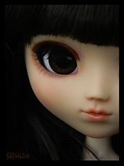 Miuze (*Sceptical*) Tags: doll full groove custom fc puppe eternia miuze