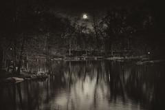 Full Moon (Joe Josephs: 2,600,180 views - thank you) Tags: newyorkcity moon centralpark fullmoon moonrise nikond700 joejosephsphotography nikon24120vrii copyrightjoejosephs2012