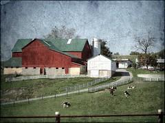Ohio ~ Charm (e r j k . a m e r j k a) Tags: ohio farm charm amish holmes erjkprunczyk