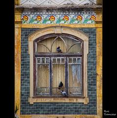 Decay (Rui Trancoso) Tags: ilustrarportugal ruitrancoso mygearandme