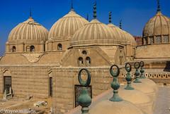 Cairo - Tomb of Muhammad Ali's family (sparqx) Tags: canon tomb cairo muhammadali waynewilliams muhammadalifamily sparqx