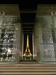 Eiffel Tower (am_hc) Tags: light paris france tower night composition dark europe steps eiffel lasers languages mygearandme flickrstruereflection1