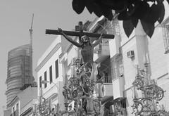 Semana Santa en Sevilla, Andaluca (Landahlauts) Tags: woman easter sevilla andaluca mujer stranger seville andalucia paso andalusia andalusien semanasanta procesion andalousie andalusie andaluz mantilla sevillano alandalus andaluzia  desconocidos cofradia hispalense hermandad  andaluzja robandoalmas stealingsouls andaluzio      isbiliya              andalouzia andalusiya      ishbiliya fujifilmxpro1