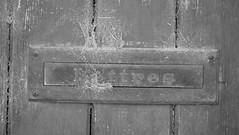 Poste restante (CCybo) Tags: blackandwhite bw white black byn blancoynegro blanco monochrome nikon noir noiretblanc box web letters negro nb blanc lettres toile bote monochroma negroyblanco toiledaraigne nyb incoloro monochromie scharwz d3100 nikond3100 spiedeweb