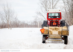 Tractor in the snow (Vincent Demers - vincentphoto.com) Tags: travel winter red white snow tractor ontario canada nature season landscape farm country farmland transportation vehicle hay agriculture travelphotography redtractor