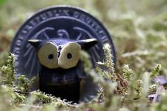The eagle and the owl (AvesAg) Tags: canon eagle owl macromondays smallerthanacoin