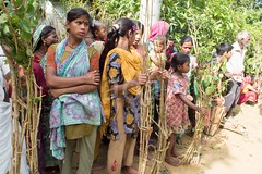 H504_3315 (bandashing) Tags: trees girls england people men festival children manchester women shrine branch village hill watch crowd huts sit hindu sylhet bangladesh bungalow socialdocumentary mazar aoa shahjalal bandashing akhtarowaisahmed treecuttingfestival
