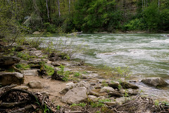 Middle Fork River (Denise @ New Mercies I See) Tags: home nature water outdoors spring may westvirginia appalachia waterscape 2016 onethousandgifts