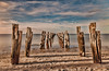 Full Frontal (BlueberryAsh) Tags: ocean seascape beach sand nikon jetty australia d750 oldjetty geelong cliftonsprings remnantpier