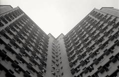 Symmetric (David Davidoff) Tags: city urban building architecture blackwhite construction geometry symmetric