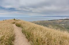 Valencia Peak (Basak Prince Photography) Tags: park green nature nationalpark hiking places montanadeoro morrobay morrorock sanluisobispo blufftrail valenciapeak dunetrail