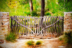 Magic gate (mru24) Tags: travel forest canon photography gate magic mallorca majorca 2016 40d