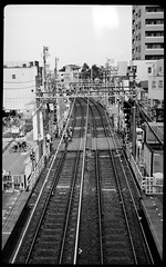 pearlette 1934  ReraPan100-127 (Tokyo Amigo) Tags: blackandwhite monochrome tokyo  1934 127film   4x65  negativfilm rokuohsha pearlette     rerapan100