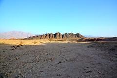 Deserts (roi.keren7) Tags: trip tree israel desert rule eilat thirds