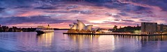 Photographers and Cameras First (Tim Poulton) Tags: ocean city sky seascape reflection building water night clouds sunrise landscape nikon ship harbour wide sydney australia tourist panoramic nsw operahouse queenelizabeth2 qe2 d3x