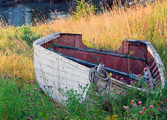 Twisted (gwhiteway) Tags: summer plants canada grass newfoundland boats rope nl
