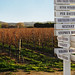 Edna Valley Wine Route