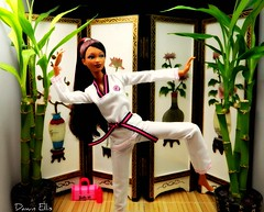 I AM a Martial Artist (Dawn Ellis) Tags: doll barbie diorama blackdoll blackbarbie blackdolls trichelle aabarbie dolldiorama soinstyle barbiepivotal