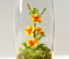 Tiny Yellow Morning Glory Terrarium in Recycled Glass (missmossgifts) Tags: miniature yellowflower morningglory terrarium mothersdaygift ipomoea missmoss recycledglass uniquebirthdaygift lunaclay handmadeterrarium miniatureterrarium flowerterrarium