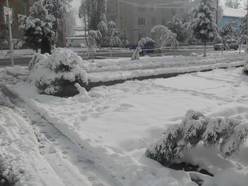 Последствия снегопада в Курган-тюбе (24)