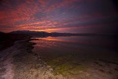 Pastel Sunrise_DSC3741 (antelope reflection) Tags: sky lake reflection water sunrise utah antelopeisland utahstatepark nikond90