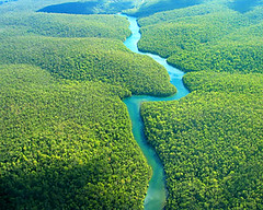 "amazon-rainforest • <a style=""font-size:0.8em;"" href=""http://www.flickr.com/photos/57634067@N04/6875458755/"" target=""_blank"">View on Flickr</a>"