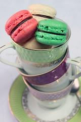 Macarons (D.M) Tags: food colors baking cookie sweet chocolate egg almond sugar desserts homemade vanilla meringue