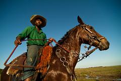 Vaqueiro do Pantanal / Pantanal cowboy (Samuel Betkowski) Tags: ranch horse water gua cowboy bluesky cavalo matogrosso pantanal horseriding fazenda vaqueiro pantaneiro montaria pantanalcowboy vaqueirodopantanal montadocavalo
