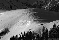 Alpine Meadows in the Morning  -  expl..4 (alpenbild.de) Tags: morning schnee winter bw snow alps tree nature monochrome contrast landscape bayern bavaria natur hütte hut alm sw monochrom alpen schwarzweiss landschaft kontrast morgen contrasts 巴伐利亚 chiemgau 50fav aschau almwiese prienerhütte kantraste alpenbildde