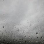 the gray abides thumbnail