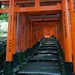 "Fushimi-Inari Taisha • <a style=""font-size:0.8em;"" href=""http://www.flickr.com/photos/57963491@N00/6977331022/"" target=""_blank"">View on Flickr</a>"