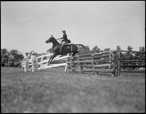 Horse jumping at Readville