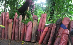 Phallus Fence (shadowplay) Tags: thailand shrine fertility lingam totems bangcock stiffies lookingforyoni viagramemorial