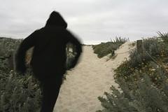 Todays walk on the wooden pathway/Asilomar State Beach (LOLO Italiana) Tags: ca beach landscape wooden sand earlymorning pacificocean wildflowers pacificgrove yellowflowers pathway asilomarstatebeach sunhat cloudyskies figureinblack sandylandscape cloudcovernature
