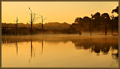 A bit of (WanaM3) Tags: park nature sunrise texas wildlife sony bayou vista pasadena canoeing paddling goldenhour darn bayareapark clearlakecity a700 armandbayou sonya700 wanam3