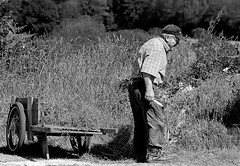 Countryside Portrait - Man collecting of the grass for its rabbits (patrick_milan) Tags: street people blackandwhite bw white black monochrome noir noiretblanc nb rue blanc personne streetview gens