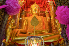 Golden color The Buddha Statue in the ubosot at Wat Phanan Choeng temple, Ayutthaya, Thailand, World Heritage Site (nattapan.suwansukho) Tags: old travel sculpture favorite art history tourism monument beautiful statue architecture asian thailand temple gold golden pagoda hall ancient worship place buddha stupa buddhist traditional famous faith prayer religion decoration culture buddhism landmark location tourist retro zen thai destination ayuthaya meditation ornate wat ordination attraction ayutthaya phananchoeng watphananchoeng