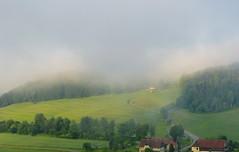 Nebel ber Rathen (isajachevalier) Tags: nebel natur sachsen landschaft schsischeschweiz rathen elbsandsteingebirge