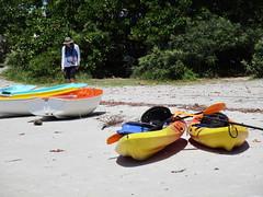 IMG_0008 (jovilady2525) Tags: beach nature canon canoes southflorida naturephotography naturephotos oletariverstatepark