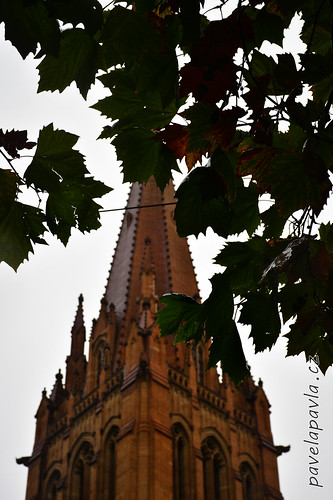 Pavel-Pavla_71_Melbourne-0083.JPG