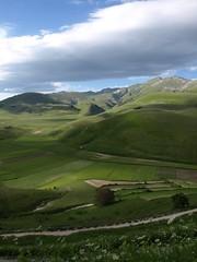 Pian' Perduto (Fraser P) Tags: flowers italy mountains primavera landscape spring umbria castelluccio pianogrande fiorita
