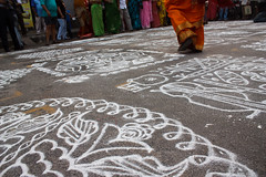Walking over kolams.jpg (melissaenderle) Tags: kolam mylapore festival india